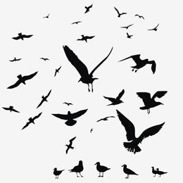 Francobolli      con categoria Uccelli   '