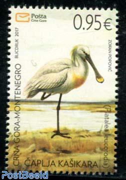 Bird, Platalea 1v