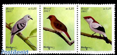 Birds 3v [::]